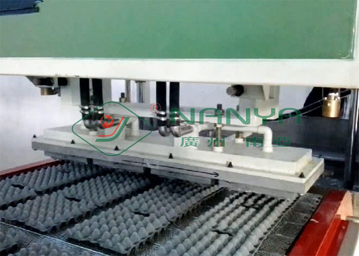 Pulp Molding Paper Egg Carton Machine , Automatic Egg Trays Production Line